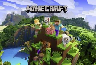 Minecraft 2 player